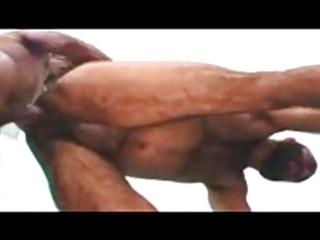 brasileiro con gran rabo follando a oso